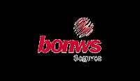 Bonws